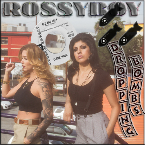 RossyBoy's Dropping Bombs